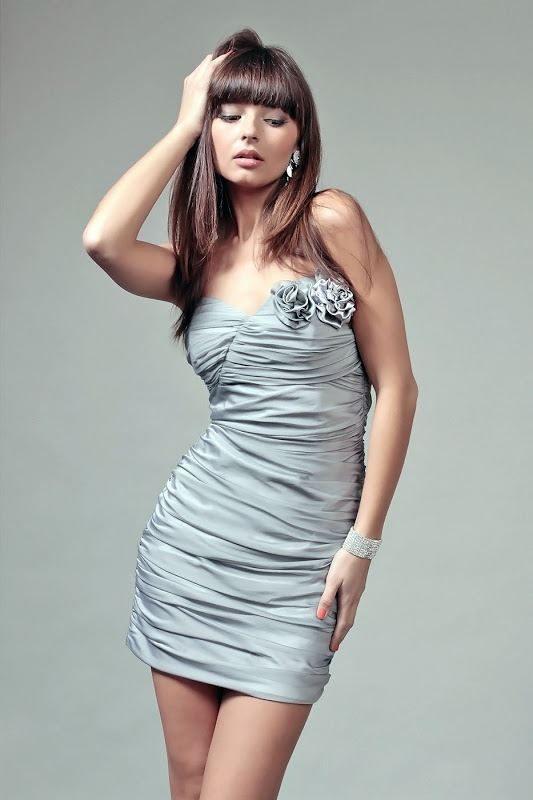 Brigitte Dress in Silver