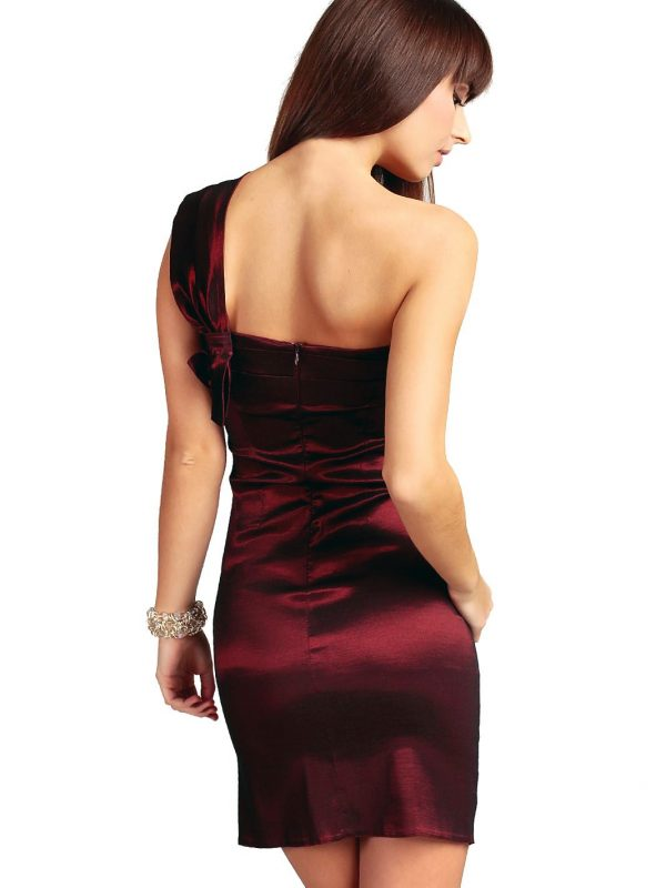 Kaja dress, burgundy
