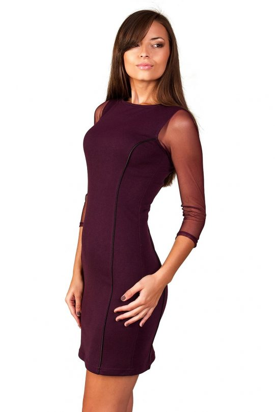 Mirelle dress in plum color